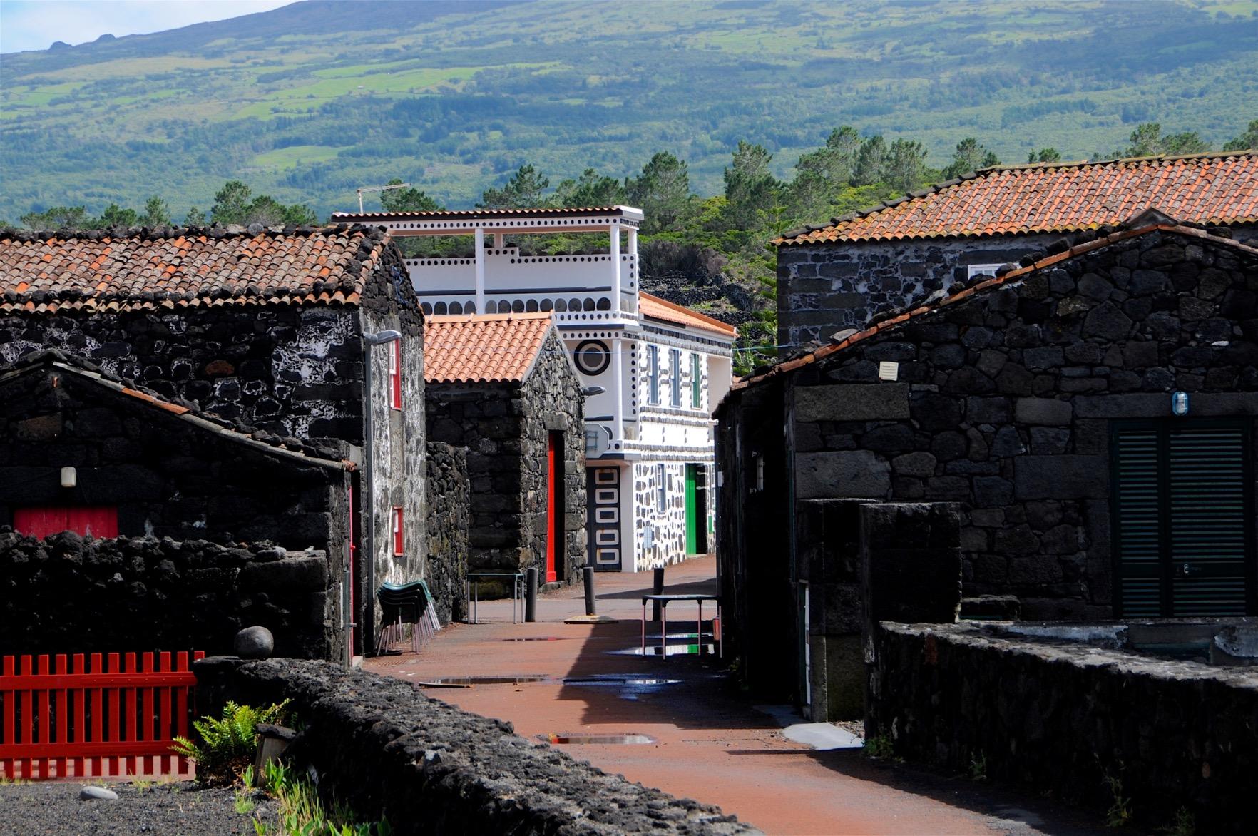 Azoren-Tag-12-6-Wanderung-Lajido-1260