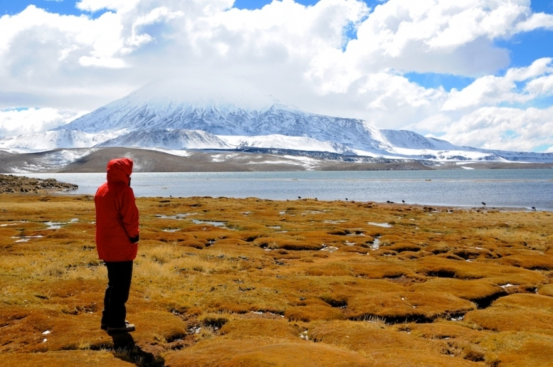 chile-2013-tag-04-2-lauca-np-0624
