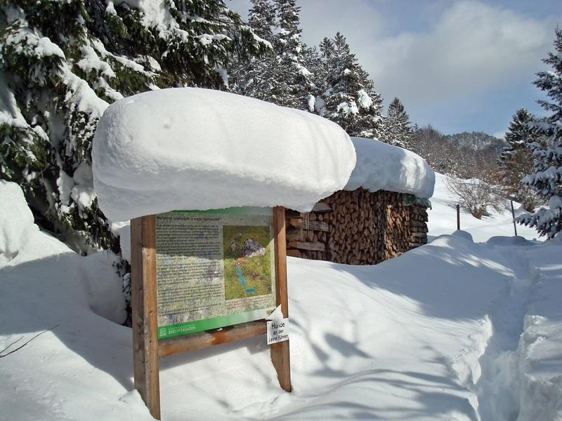 berchtesgaden-februar-09-279