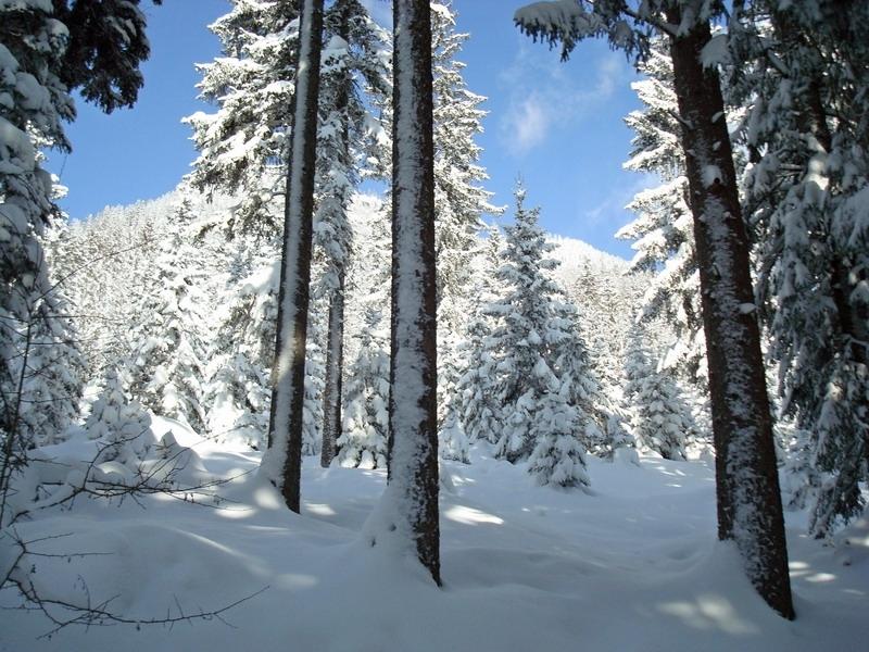 berchtesgaden-februar-09-218