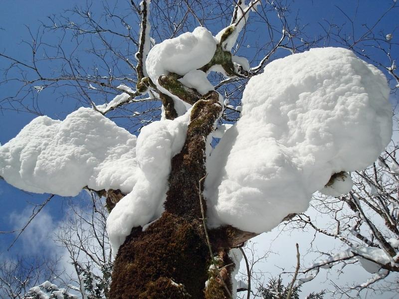 berchtesgaden-februar-09-243