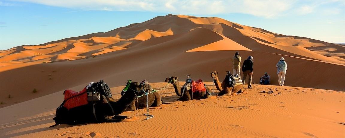 13 Zeltcamp Sahara - 0634