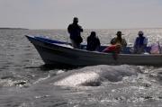mexiko-2012-tag-08-lopez-mateos-1284