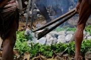 papua-2012-tag06-dani-0661