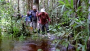 papua-2012-tag11-trekking-1220