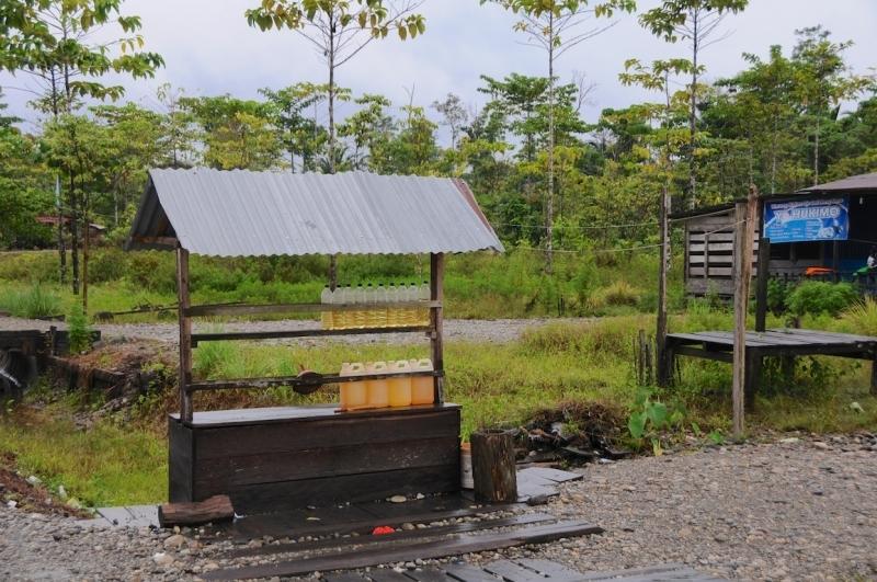 papua-2012-tag08-dekai-0898