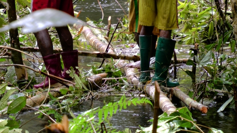 papua-2012-tag11-trekking-1215
