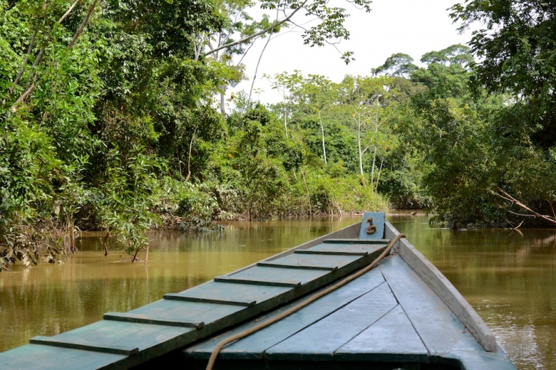 09-lago-valencia-1594-amazonien-2013