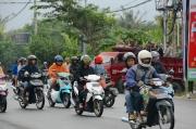 papua-bali-2012-0010