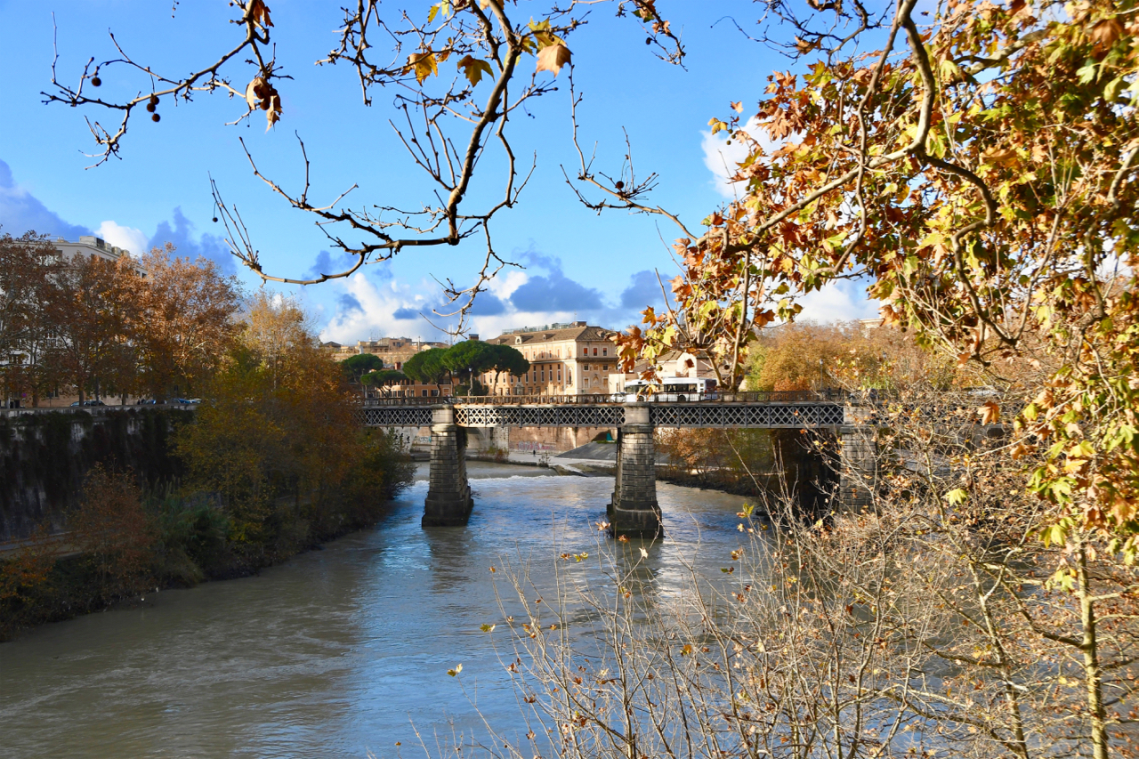 Rom-2019-14-Trastevere-0365