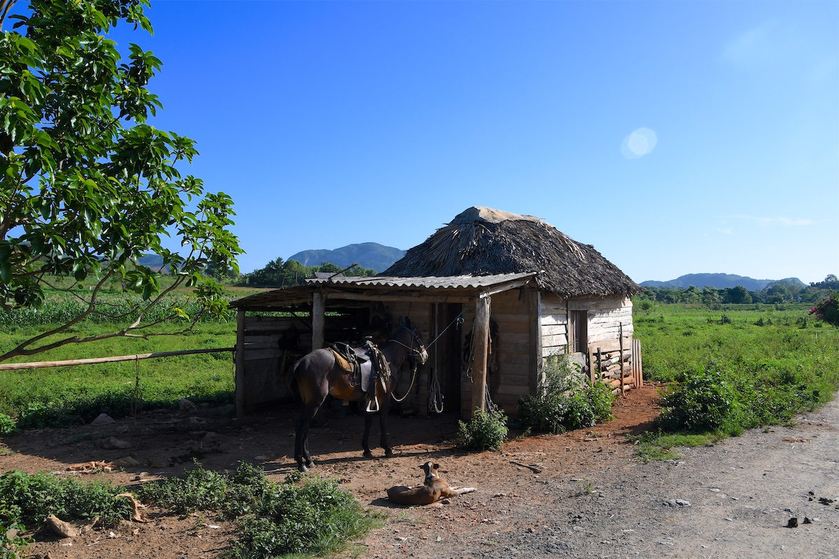 04-Kuba-2019-Vinales-Tal-0346