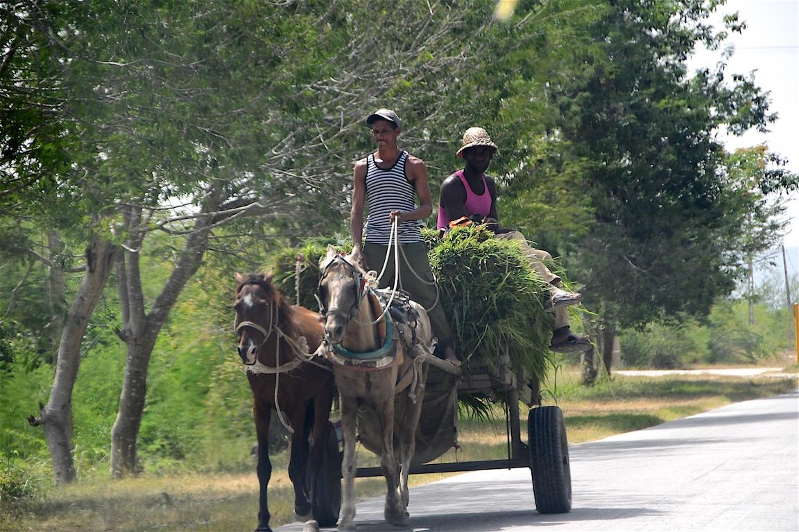37-Kuba-2019-Fahrt-Barracoa-1339
