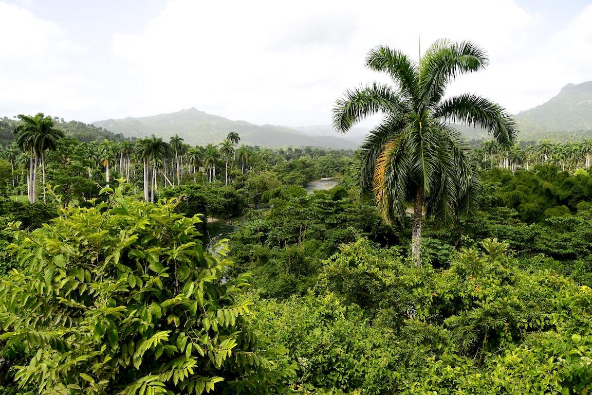 41-Kuba-2019-Barracoa-Umgebung-1489