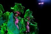 02-Kuba-2019-Tropical-Show-0220