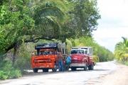 06-Kuba-2019-Layut-Jutias-0430