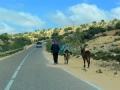 33 Fahrt Essaouira - 1193
