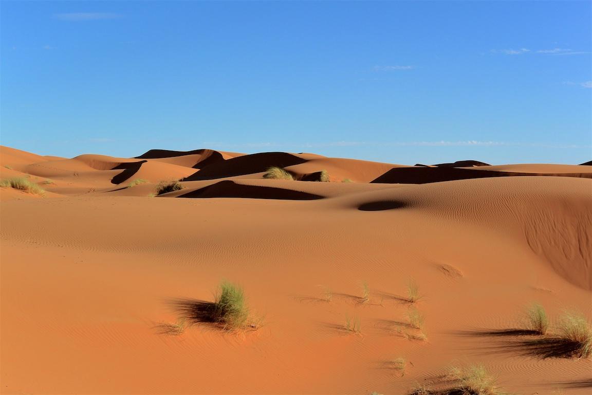 13 Zeltcamp Sahara - 0617