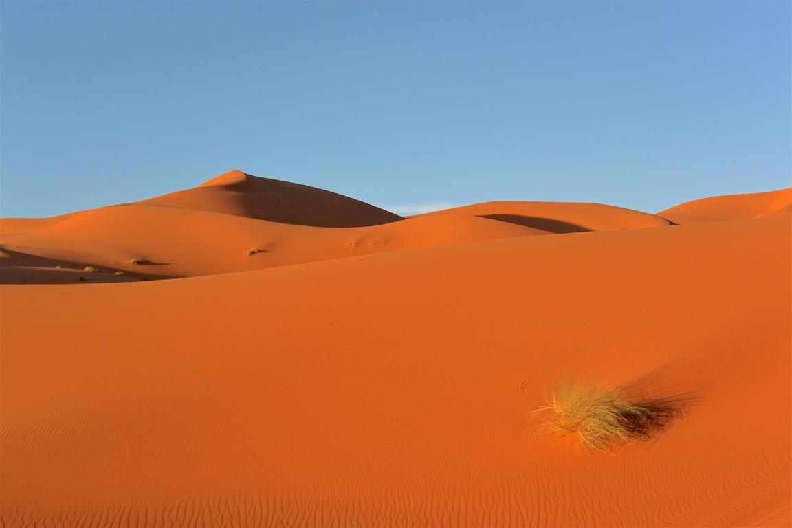 13 Zeltcamp Sahara - 0648