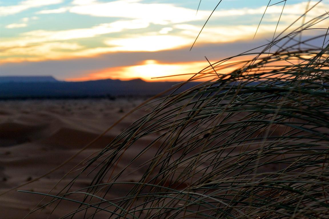 14 Zeltcamp Sahara - 0679