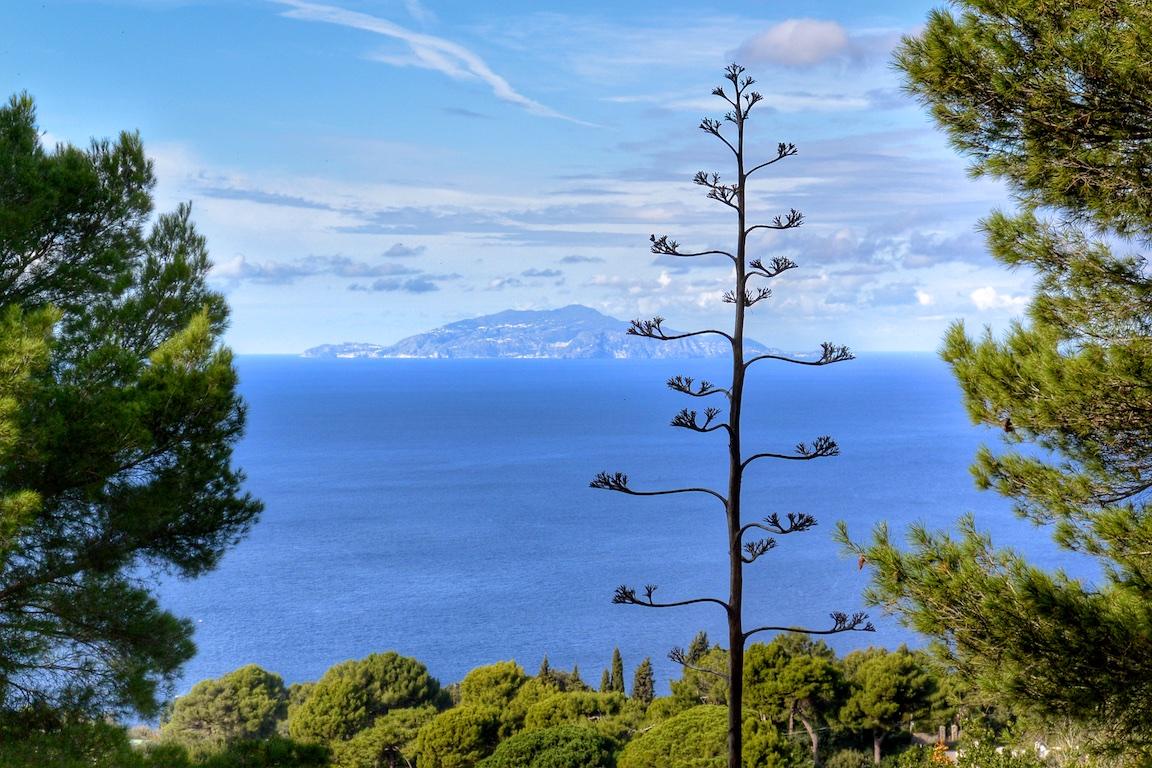 Tag 06 Capri - 060