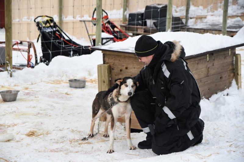 15-Kirkenes-Schlittenhunde-0802