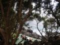 Azoren Tag 12-1 Aldeja de Forte 1054