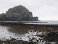 Azoren Tag 12-2 Lajes do Pico 1068