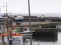 Azoren Tag 12-2 Lajes do Pico 1074