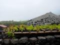 Azoren Tag 12-3 SW-Kueste 1082