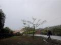 Azoren Tag 12-3 SW-Kueste 1092