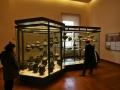 Rom-2019-21-Vatikanische-Museen-0689