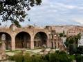 Rom-2019-17-Palatin-Forum-Romanum-0460