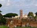 Rom-2019-17-Palatin-Forum-Romanum-0462