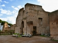 Rom-2019-17-Palatin-Forum-Romanum-0463