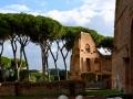 Rom-2019-17-Palatin-Forum-Romanum-0466