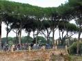 Rom-2019-17-Palatin-Forum-Romanum-0475