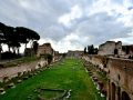 Rom-2019-17-Palatin-Forum-Romanum-0476