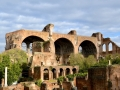 Rom-2019-17-Palatin-Forum-Romanum-0483