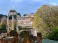 Rom-2019-17-Palatin-Forum-Romanum-0488