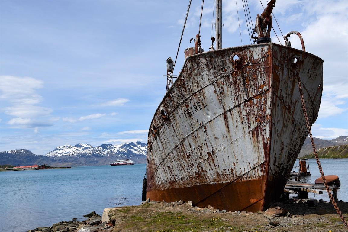 10 Sued Georgien - Grytviken 060