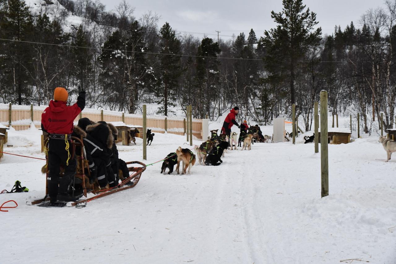15-Kirkenes-Schlittenhunde-0783