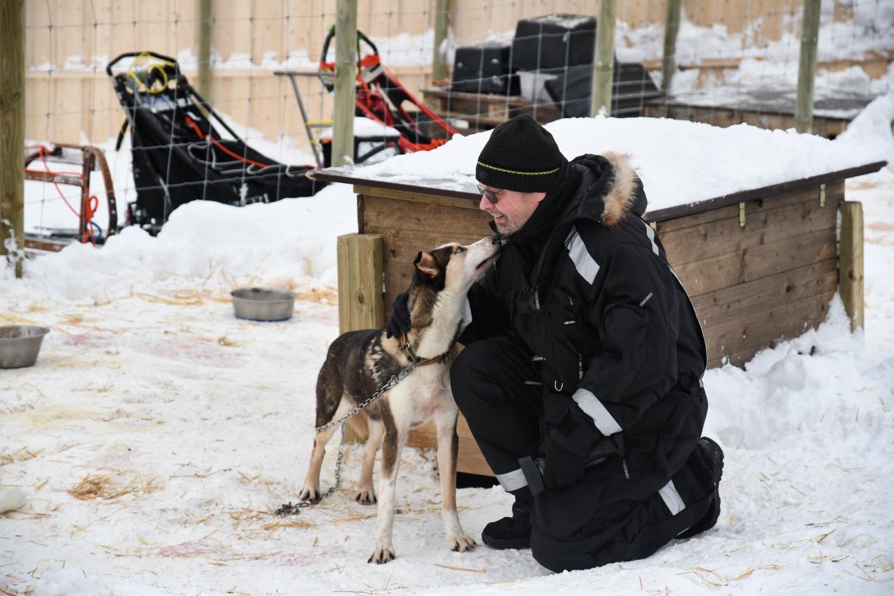 15-Kirkenes-Schlittenhunde-0807