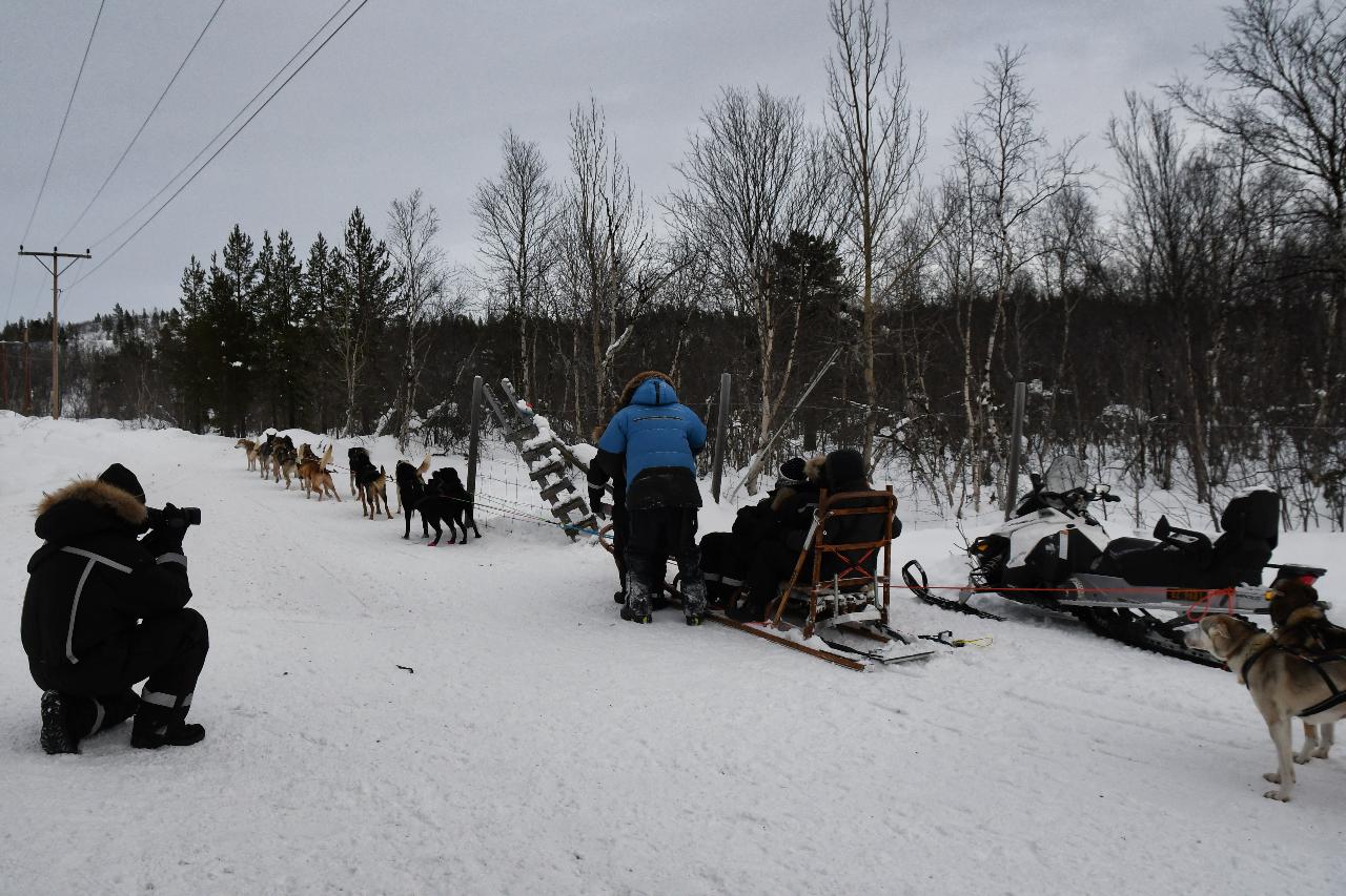 15-Kirkenes-Schlittenhunde-0871