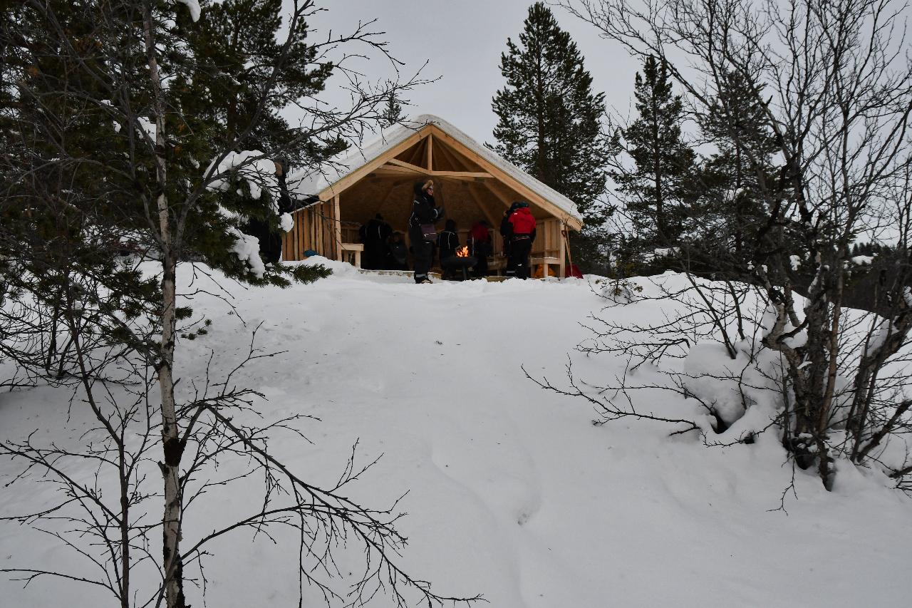 15-Kirkenes-Schlittenhunde-0897
