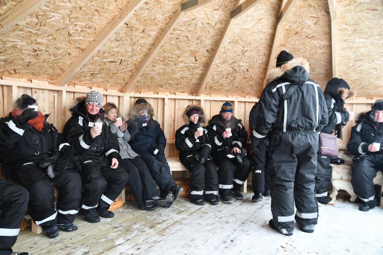 15-Kirkenes-Schlittenhunde-0900