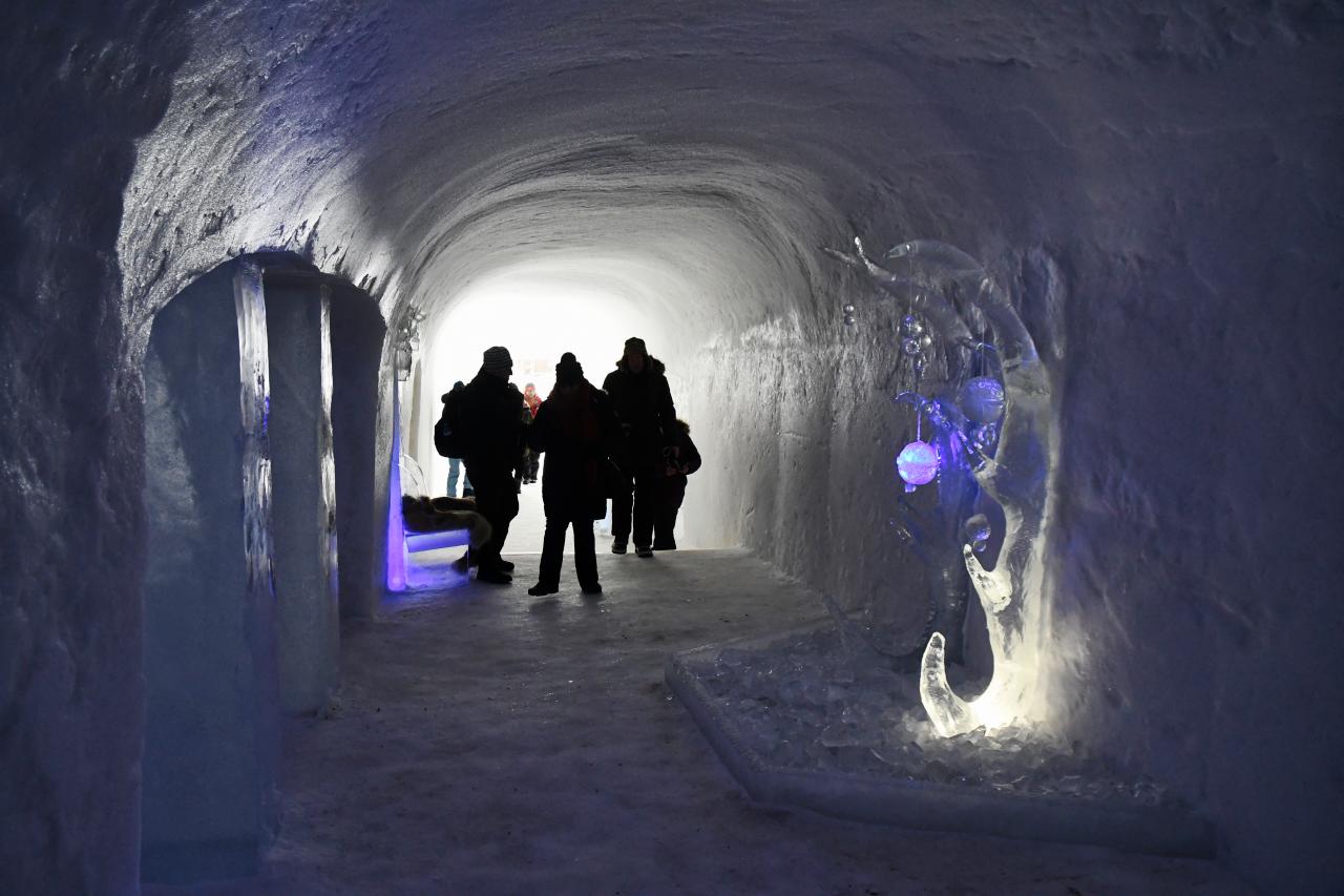 15-Kirkenes-Schlittenhunde-0963