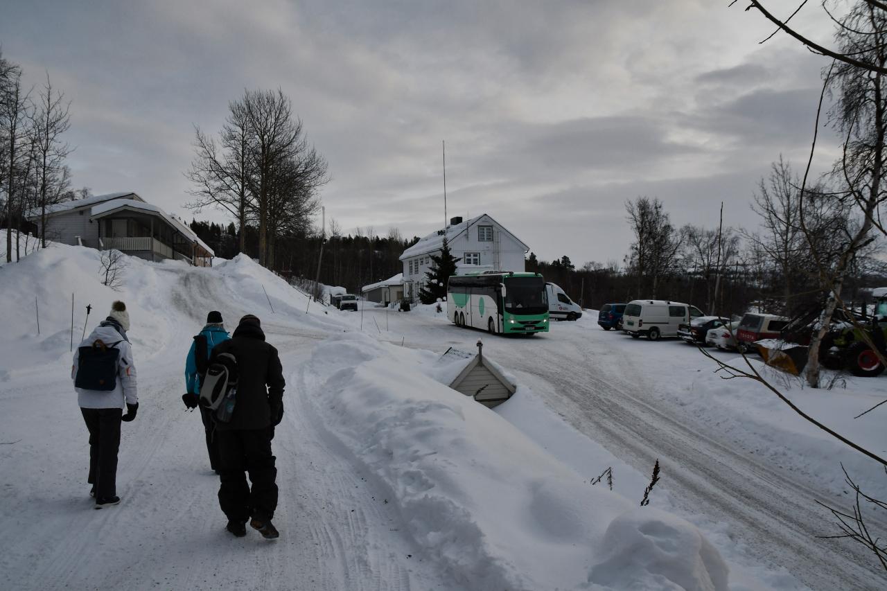 15-Kirkenes-Schlittenhunde-0979