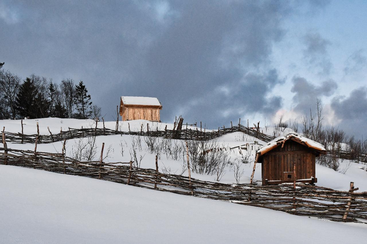 21-Harstad-1128