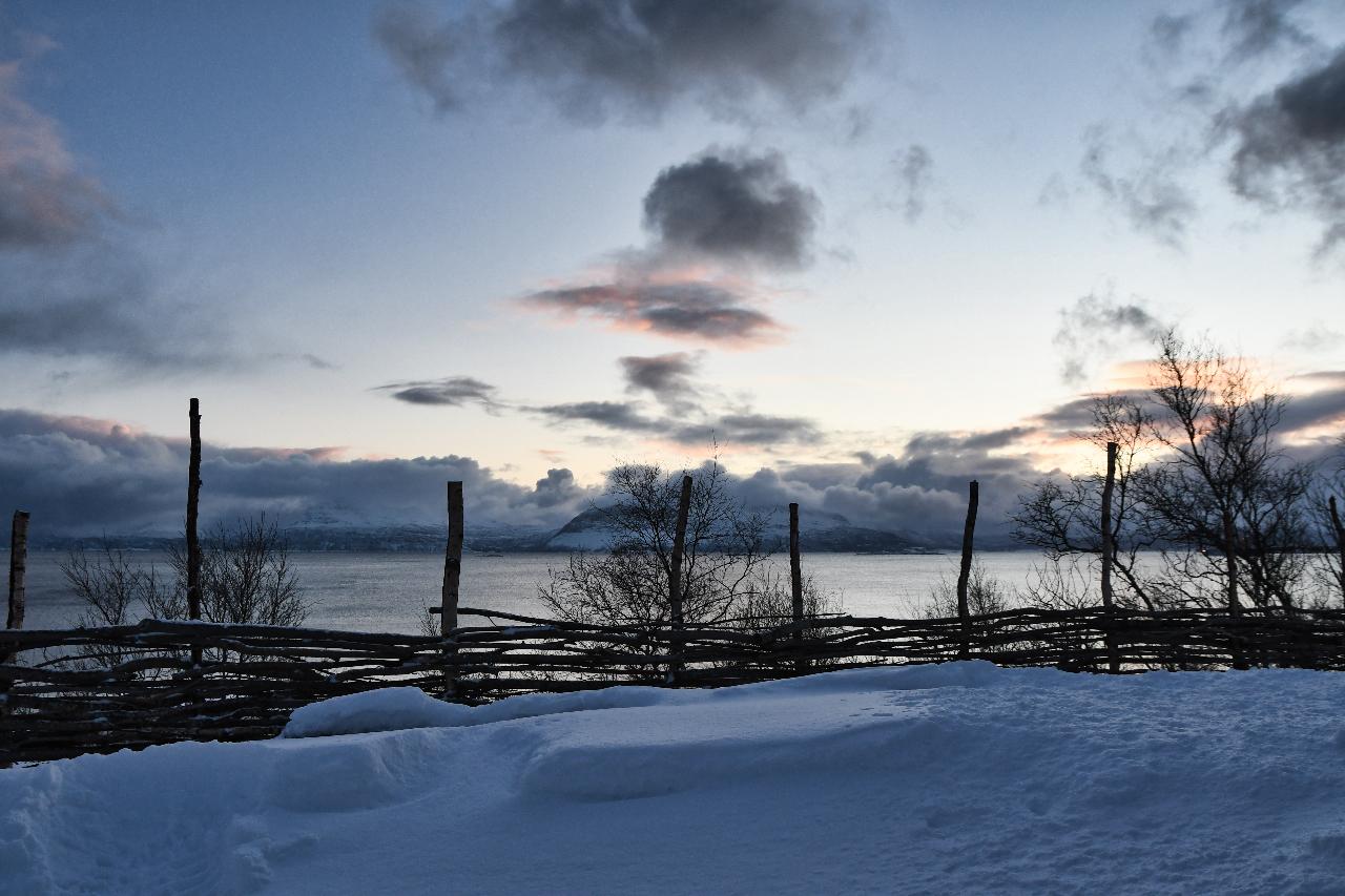 21-Harstad-1137