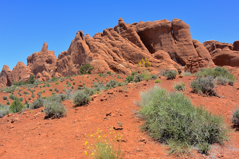 USA 2014 11 Arches NP 348